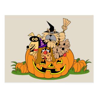 Happy Halloween Dogs In Pumpkin Postcard