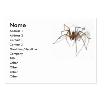 Happy Halloween party Spider Large Business Card