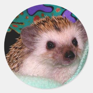 Happy Hedgehog Round Sticker