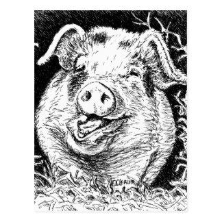 happy hog animal drawing postcard