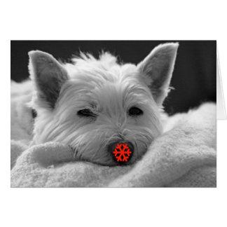 Happy Holidays - Cute Westie Dog Card