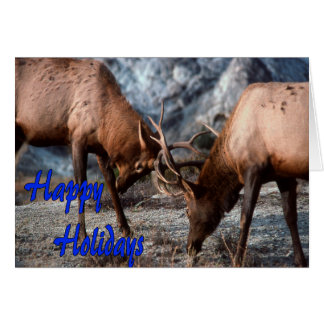Happy Holidays deer fight.jpg Card