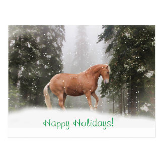 Happy Holidays Draft Horse Postcard