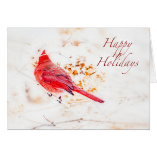 Happy Holidays Greeting Card - Eastern Cardinal