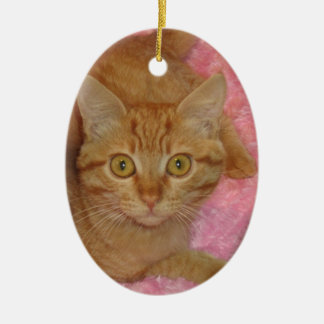 Happy Holidays Marmalady Ornament