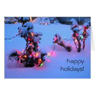 Happy Holidays Neighbor Lights Greeting Cards