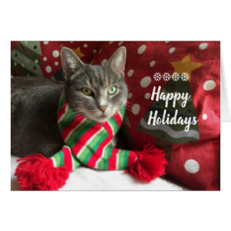 Happy Holidays! purr... Card