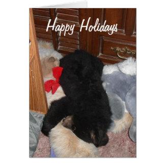 Happy Holidays - Shenandoah Bright Card