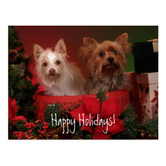 Happy Holidays Yorkie and Friends Postcard