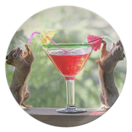 Happy Hour Squirrels Plate