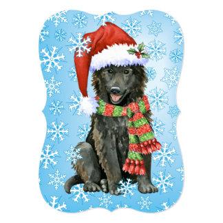 Happy Howlidays Belgian Sheepdog Card