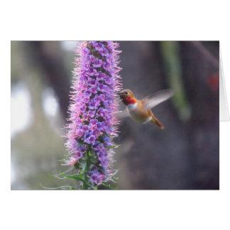 Happy hummingbird card