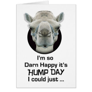 Happy Hump Day Funny Camel Spit Greeting Card
