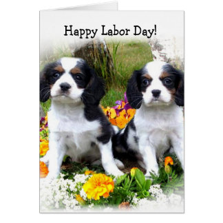 Happy Labor day King Charles Spaniel puppies card