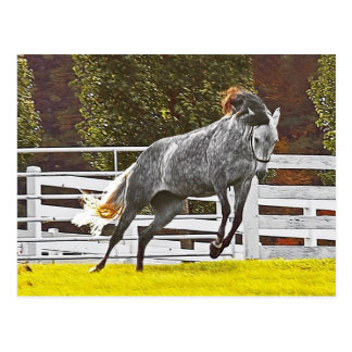 Happy Leaping Horse Postcard