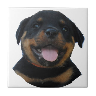 Happy Male Rottweiler Puppy Tile