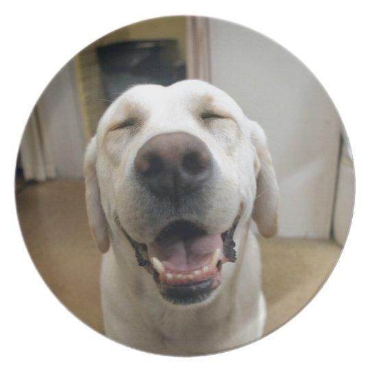 Happy Max ! Plate