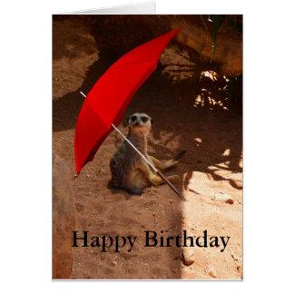 Happy Meerkat Birthday Greeting Card