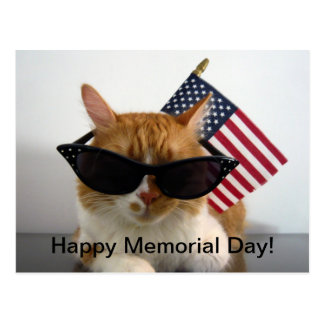 Happy Memorial Day Cool Cat with Flag Postcard