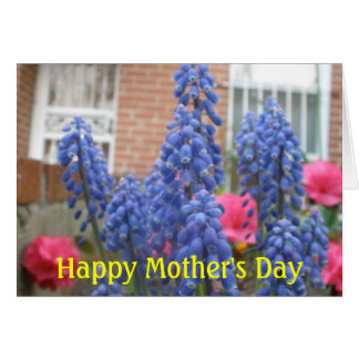 Happy Mother s Day Cards