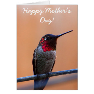 Happy Mother's Annas Hummingbird Greeting Card