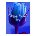 Happy Mother's Day Blue Rose