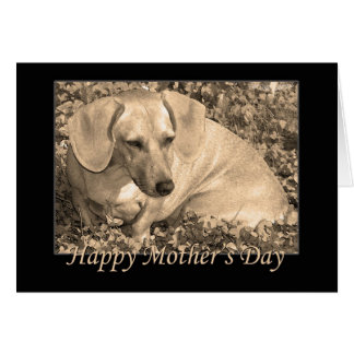 Happy Mother's Day dachshund Sepia Card