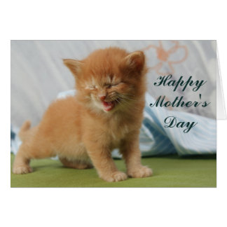 Happy Mother's Day Kitten Card