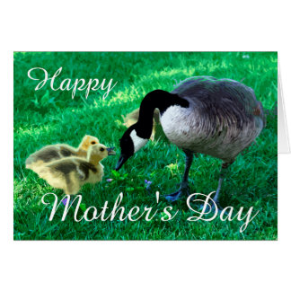 Happy Mother's Day - Mother Goose Card