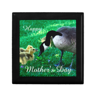 Happy Mother's Day - Mother Goose Gift Box