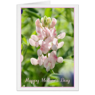 Happy Mother's Day Pink Bluebonnet Greeting Card