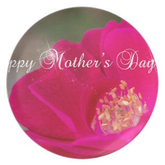 Happy Mothers Day Plate