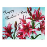Happy Mother's Day Post Cards