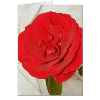 Happy Mother's Day Red Rose II Greeting Card