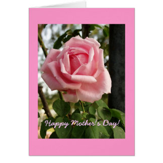 """Happy Mother's Day Rose"" Card"