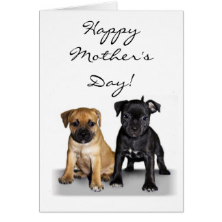 Happy Mother's Day Staffie puppies greeting card