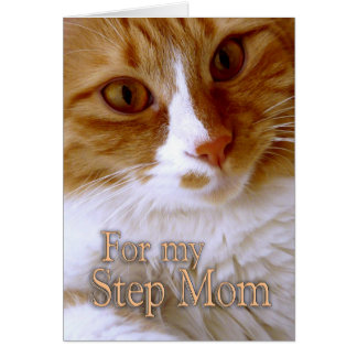 Happy Mother's Day - Step Mom Sweet Cat Card