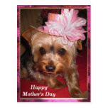 Happy Mother's Day Yorkie