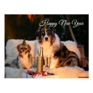 Happy New Year funny dogs with party hat Postcard
