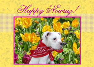 Happy nowruz cards greeting cards more zazzle ca happy nowruz boxer puppy greeting card m4hsunfo