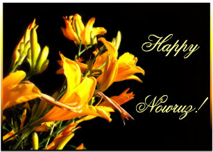 Happy nowruz cards greeting cards more zazzle ca happy nowruz daylily greeting card m4hsunfo