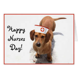 Happy Nurses Day Dachshund greeting card