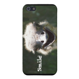 Happy Ostrich- Smile! iPhone 5 Case