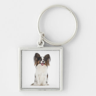Happy Papillon Brown and White Puppy Dog Keychain