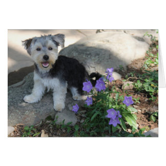 Happy Puppy Blank Note Card