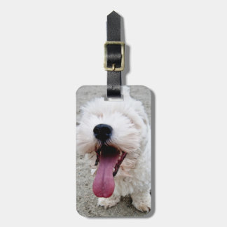 Happy Puppy white dog, malteese, maltipoo. Luggage Tag