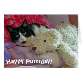 Happy Purrrday Cat Card