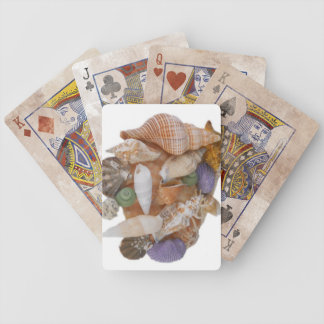 Happy Shells Cards