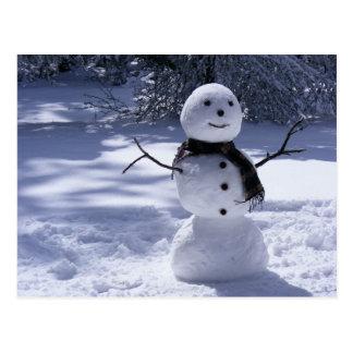 HAPPY SNOWMAN 1 POSTCARD