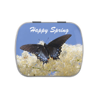 Happy Spring Butterfly